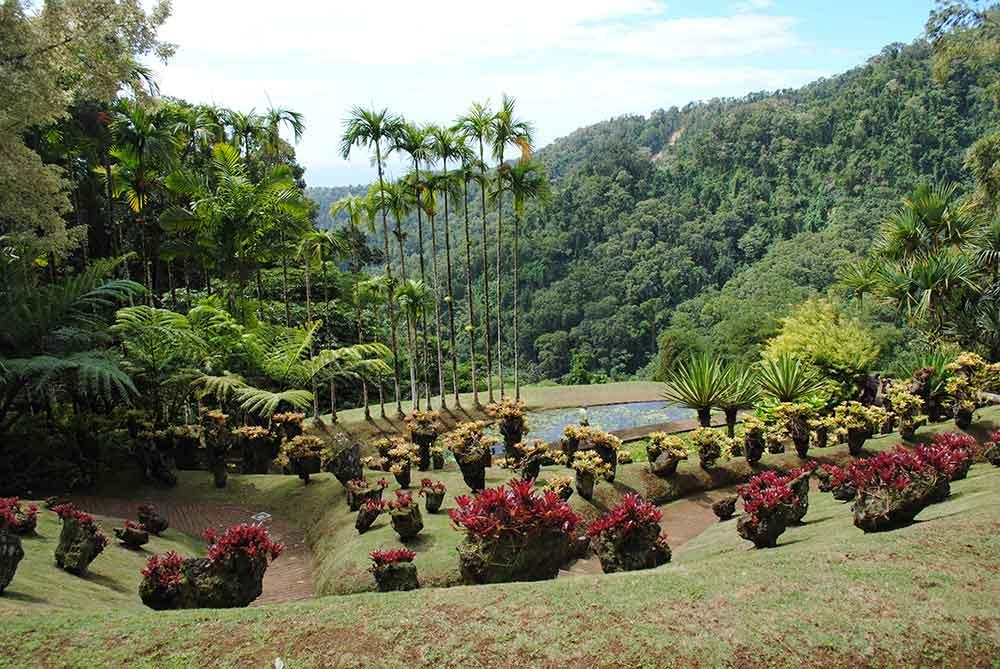 Balata Gardens, Martinique