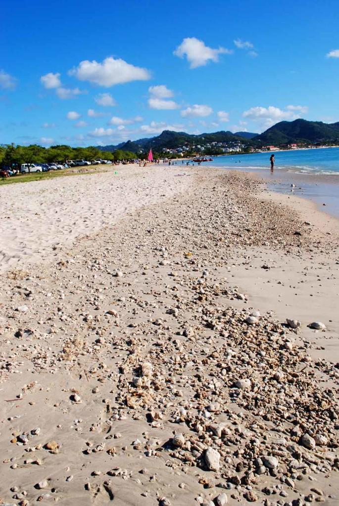 Beach, Rodney Bay, St. Lucia