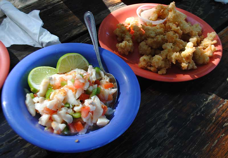 Marinated Conch Salad and Cracked Conch