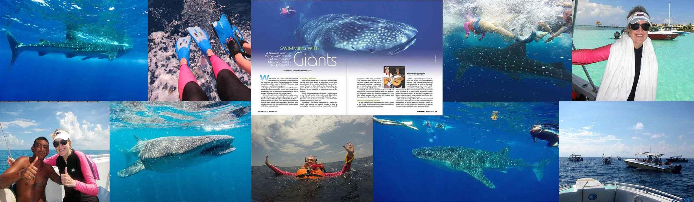 WhaleSharksAAAPost_WEB