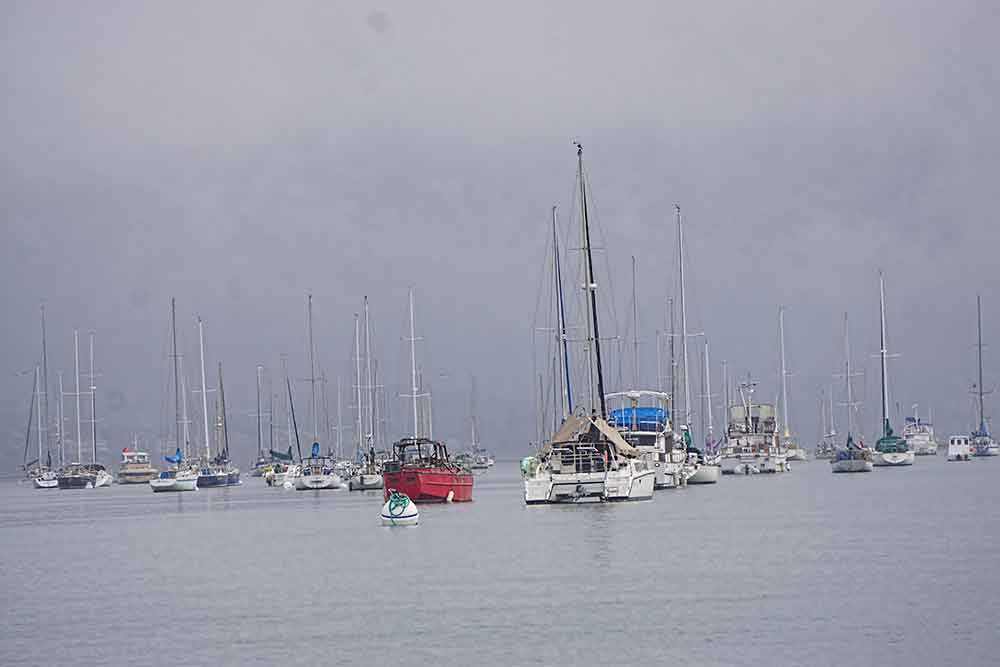 Morro Bay boats in mist