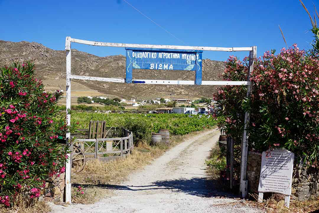 Entrance to Vioma organic winery on Mykonos