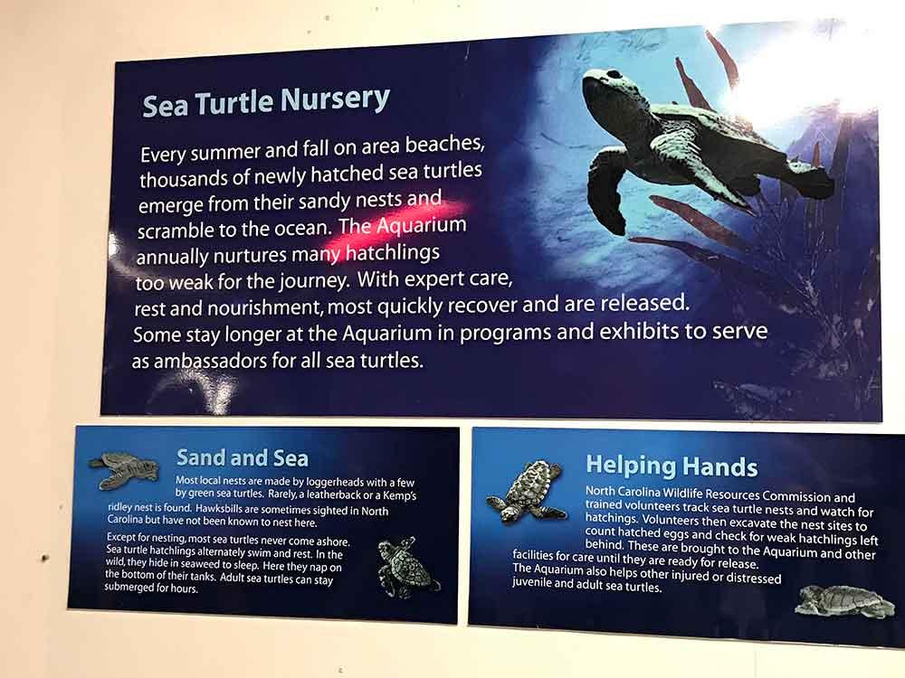 North Carolina Aquarium at Pine Knoll Shores Sea Turtle Nursery Sign